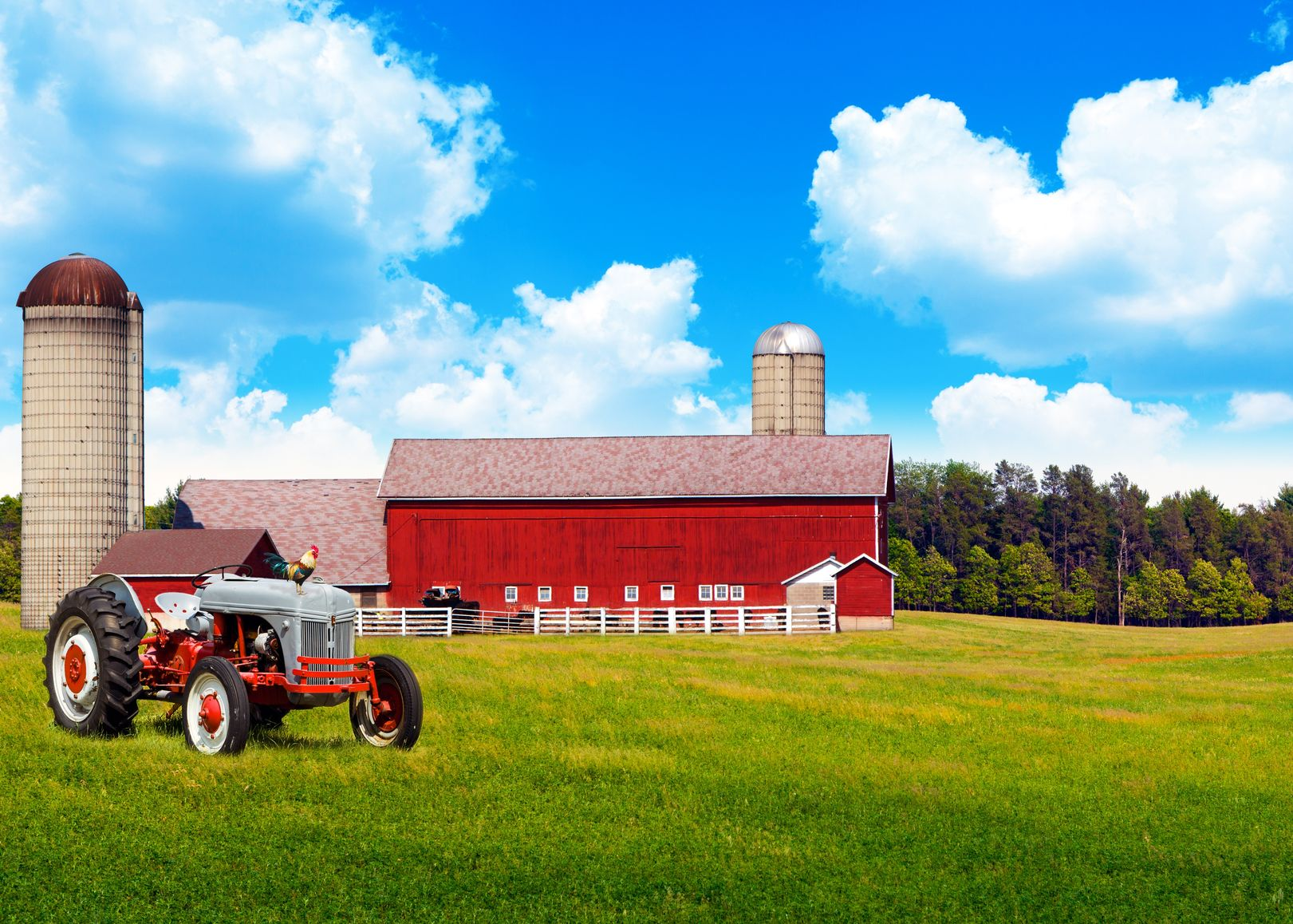 Laguna Niguel Farm & Ranch Insurance